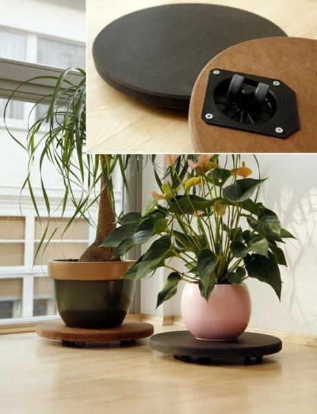 Schöner Wohnen | Pflanzenroller: Farbe braun, Ø 37 cm